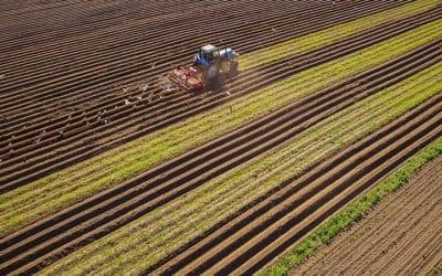 Tréleres mezőgazdasági gép szállítás